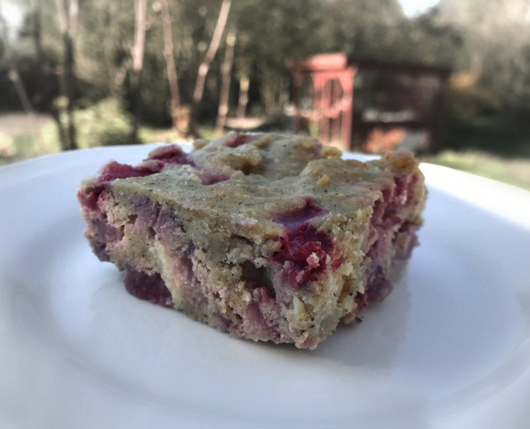 Glutenfri og sukkerfri Jordbær og Vanilje kage