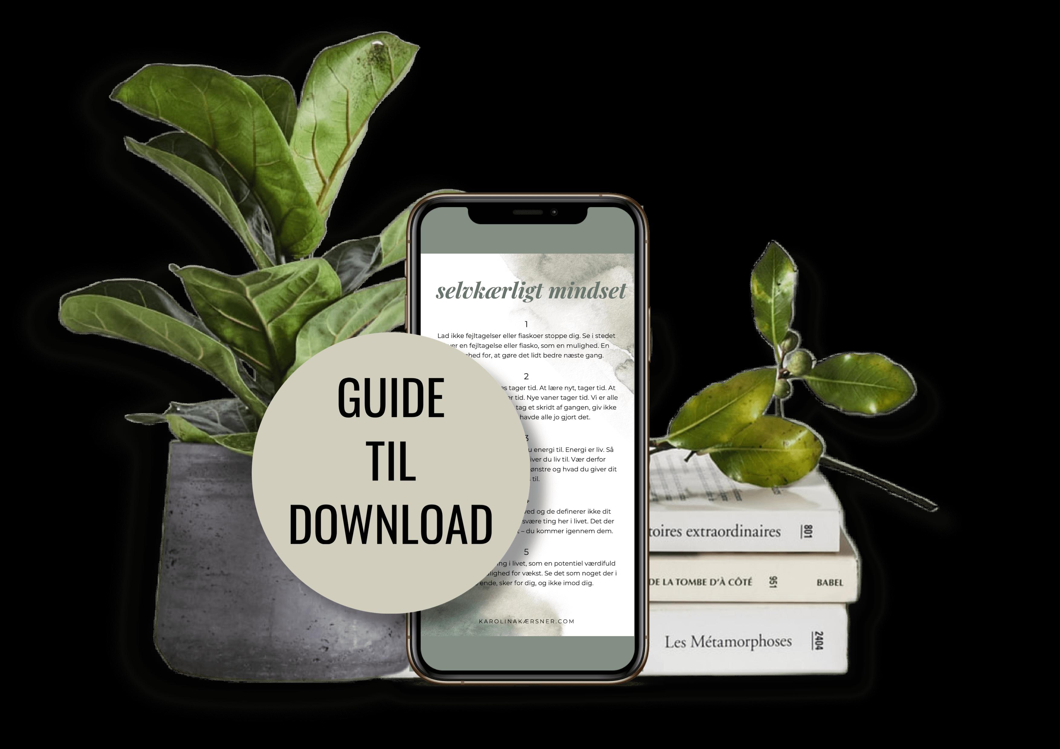 Selvkærlig Mindset Guide til download